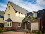 Thumbnail to rent in The Jay, Heyford Meadows, Hankelow