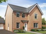"Thumbnail to rent in ""Radleigh"" at Lukes Lane, Hebburn"