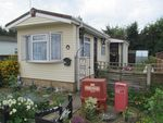 Thumbnail for sale in Stirling Avenue, Grange Farm Estate, Upper Halliford, Shepperton, Surrey