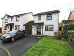 Thumbnail for sale in Briardene, Llanfoist, Abergavenny, Monmouthshire