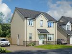 Thumbnail to rent in Plot 49 Lomond, Oaktree Gardens, Alloa, Clackmannanshire