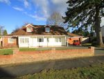 Thumbnail for sale in Oaks Drive, St Leonards, Dorset