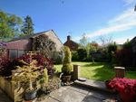 Thumbnail for sale in Maiden Newton, Dorchester