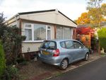 Thumbnail to rent in Hillbury Park, Hillbury Road, Alderholt, Fordingbridge, Hampshire