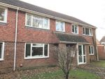 Thumbnail to rent in De Lucy Avenue, Alresford, Hampshire