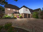 Thumbnail for sale in Cottis Close, Langdon Hills, Basildon