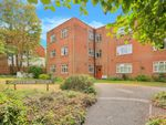 Thumbnail to rent in Grosvenor Road, St. Albans