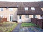 Thumbnail to rent in The Coppice, Coulby Newham, Middlesbrough