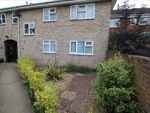 Thumbnail to rent in Balfe Court, Colchester