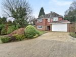 Thumbnail for sale in Fox Lane, Keston