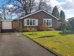 Thumbnail for sale in Guillards Oak, Midhurst, West Sussex