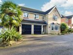 Thumbnail for sale in Sheene Grove, Braintree