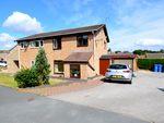 Thumbnail to rent in Owlthorpe Rise, Mosborough, Sheffield