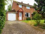 Thumbnail for sale in Palewell Close, Orpington