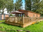 Thumbnail to rent in Mallard View, Billing Aquadrome, Crow Lane, Northampton