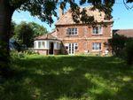 Thumbnail to rent in Chilton Trinity, Bridgwater