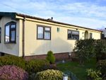 Thumbnail for sale in Rosewarne Park, Higher Enys Road, Camborne, Cornwall