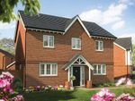 """Thumbnail to rent in """"The Chestnut """" at Stafford Road, Eccleshall, Stafford"""