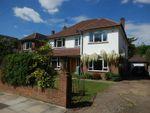Thumbnail to rent in Ormond Crescent, Hampton