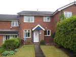 Thumbnail to rent in Summerhill Drive, Waterhayes, Newcastle