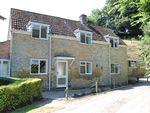 Thumbnail for sale in West Milton, Bridport, Dorset