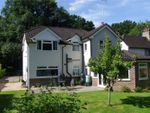 Thumbnail for sale in Standford Lane, Standford, Hampshire