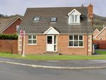 Thumbnail to rent in Lansdowne Drive, Newtownards