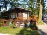 Thumbnail to rent in Beauport Park, The Ridge West, St. Leonards-On-Sea