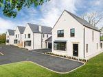 Thumbnail to rent in Gransha Road, Dundonald, Belfast