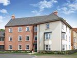 "Thumbnail to rent in ""Malton"" at Greenkeepers Road, Great Denham, Bedford"