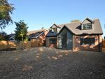 Thumbnail to rent in Warren Close, High Kelling, Holt