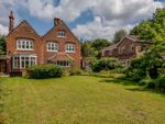 Thumbnail to rent in Albemarle Road, Norwich
