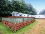 Thumbnail to rent in Oakcliff Park, Mount Pleasant Road, Dawlish Warren, Dawlish