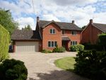 Thumbnail to rent in Gaston Street, East Bergholt, Colchester, Suffolk