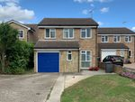Thumbnail for sale in Daffodil Way, Springfield, Chelmsford