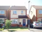 Thumbnail to rent in Austin Court, Yaxley, Peterborough.