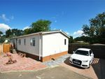 Thumbnail for sale in Danesbury Park Road, Woodlands Park Homes, Welwyn, Hertfordshire