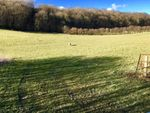 Thumbnail for sale in Land Adjacent Church House Orchard, Llanllwchaiarn, Aberbechan, Newtown, Powys