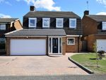 Thumbnail for sale in Lime Farm Way, Great Houghton, Northampton