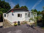 Thumbnail for sale in 61 Sunny Haven, Howey, Llandrindod Wells