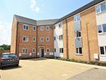 Thumbnail to rent in Jutland Rise, Wymondham