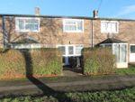 Thumbnail to rent in Acacia Street, Hatfield