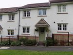 Thumbnail to rent in Toll House Way, Chard