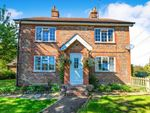 Thumbnail for sale in The Causeway, Bodle Street Green, Hailsham, East Sussex