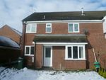 Thumbnail to rent in Eaglesthorpe, New England, Peterborough