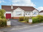 Thumbnail for sale in Beechfield Park, Coleraine, County Londonderry