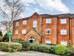 Thumbnail to rent in Vanguard Close, Bury