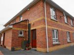 Thumbnail to rent in Rossorry Court, Enniskillen