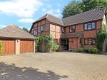 Thumbnail for sale in Birchanger, Busbridge, Godalming, Surrey
