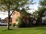 Thumbnail to rent in Harbour Lane, Warton, Preston